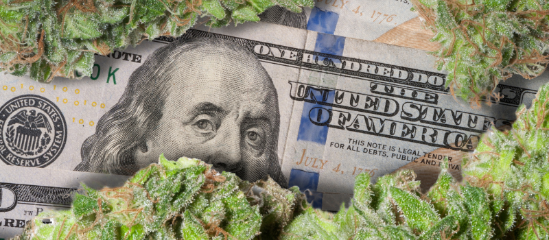 Beleggen in Marihuana